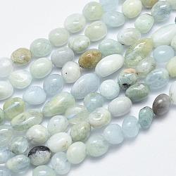 Chapelets de perles en aigue-marine naturelle, nuggets, 10~14x6~8mm, trou: 1mm; 15.3'' (39cm)(G-F547-24)