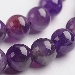 """Améthyste naturelle brins de pierres précieuses perles rondes, 6mm, trou: 1mm; environ 65 pcs/chapelet, 14.9""""(G-J333-01-6mm)"""